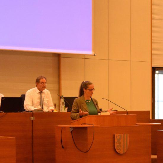 Die Vorsitzende Petra Elias vor dem Stadtrat in der bildungspolitischen Stunde. Schulsozialarbeit.